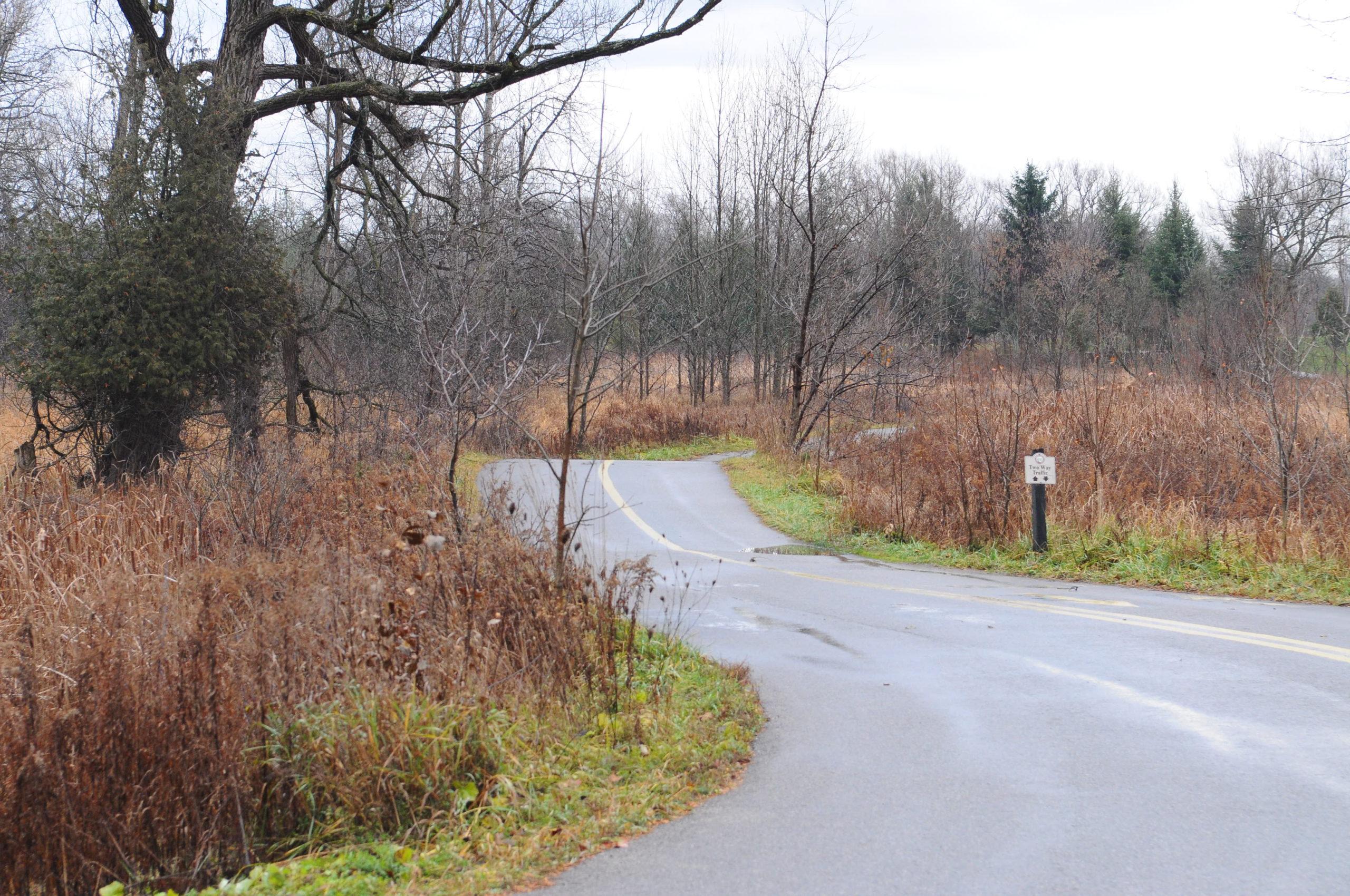 Walter Bean Trails